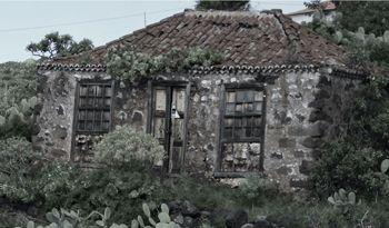 Gesünder als vermutet: Wohnen im traditionellen, palmerischen Haus